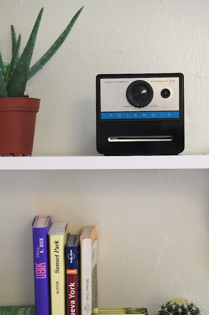 polaroid cacher shelve